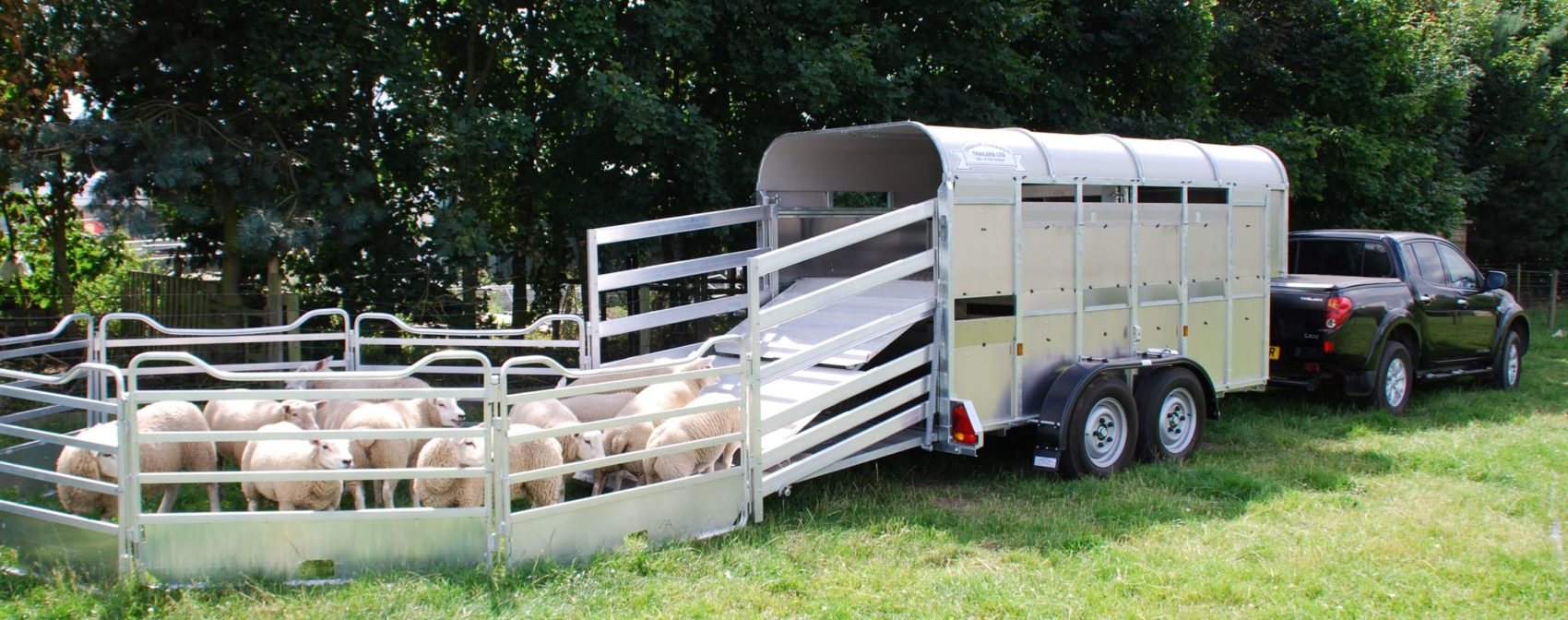 Edwards Trailers Cattle Box with sheep
